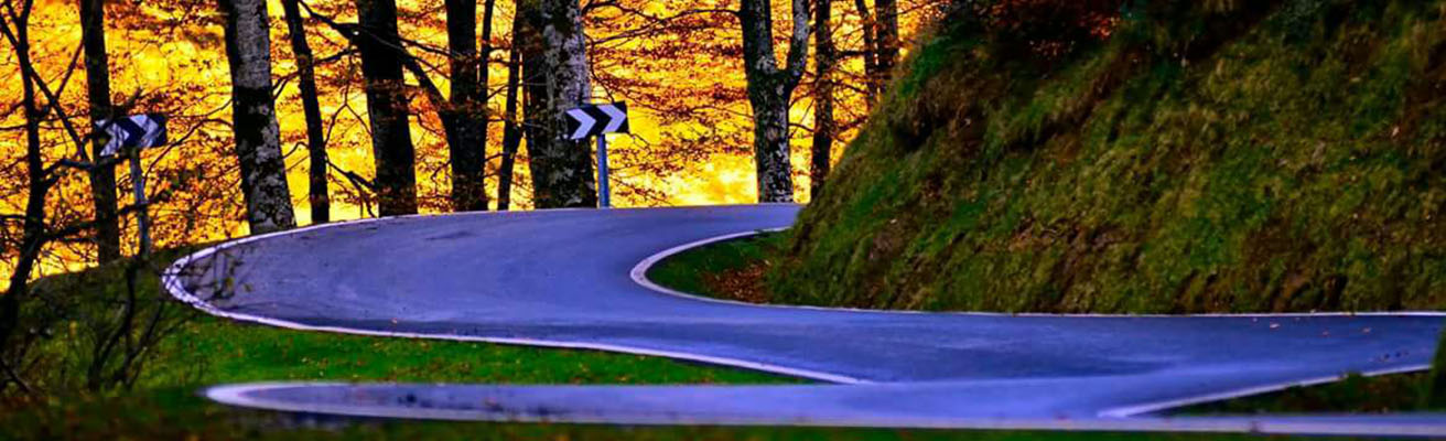 Ciclismo Pirineo en Otoño Road