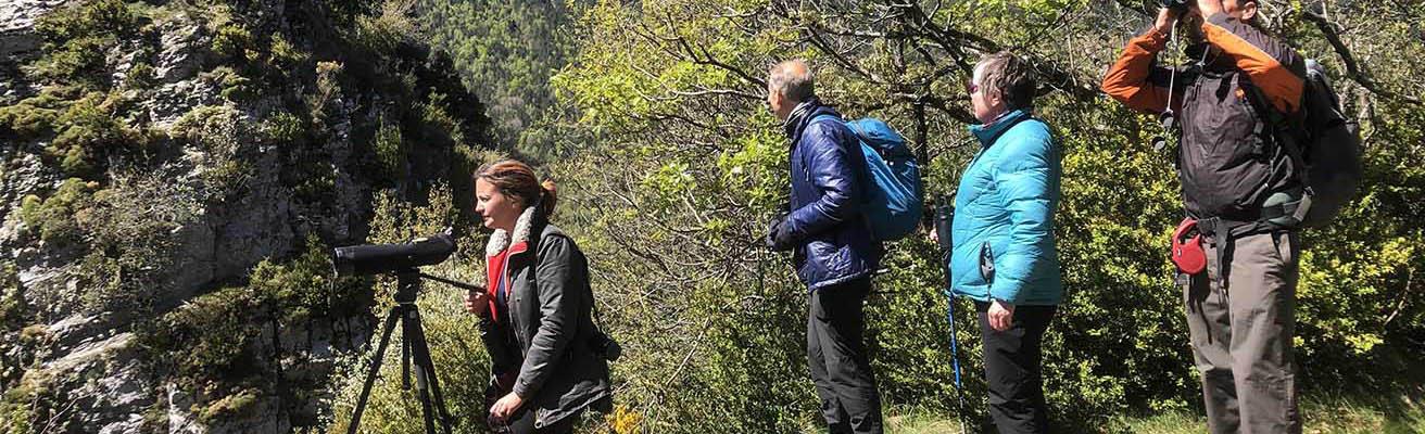 Naturaleza Pirineos Huesca