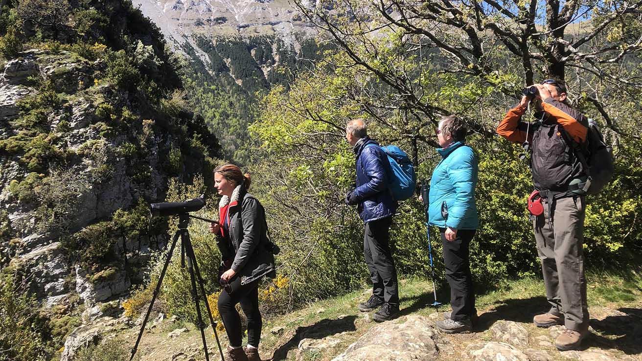 Naturaleza Pirineos Zona de Escuain