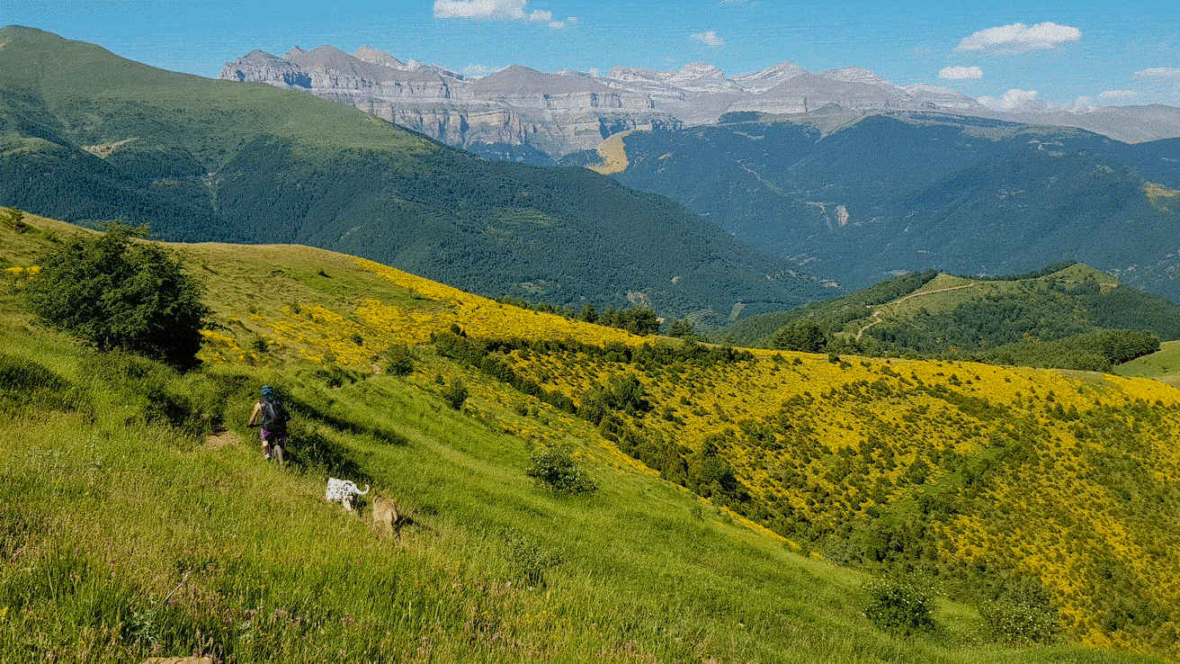 Pirineos E Bike Bajada a Yosa y Ordesa como telon de fondo