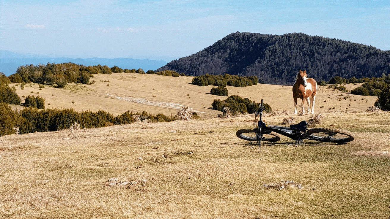 Pirineos E Bike Las Mallatas de Albella
